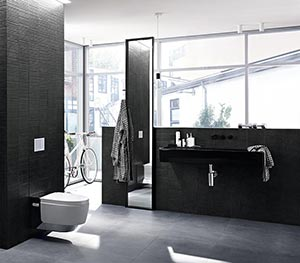 das dusch wc eine kleine revolution im bad. Black Bedroom Furniture Sets. Home Design Ideas