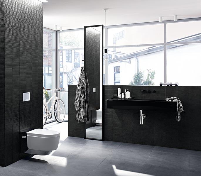 das dusch wc eine kleine revolution im bad. Black Bedroom Furniture Sets. Home Design Ideas