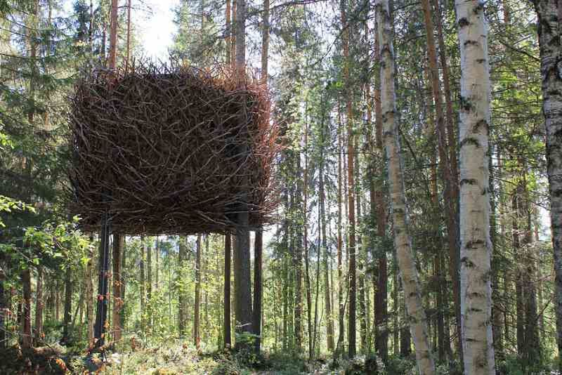 Vogelnest Baumhaus