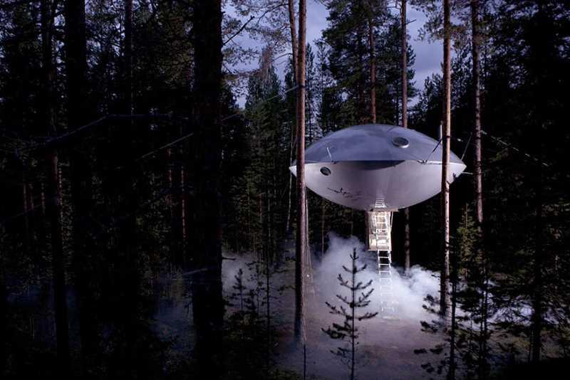 UFO-Baumhaus im Wald