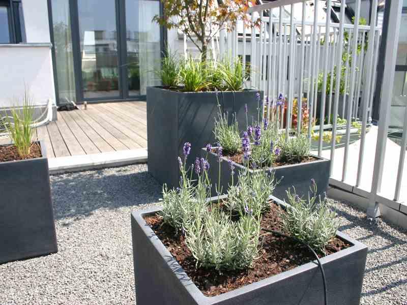 Feste Pflanzentöpfe für Windsicherheit
