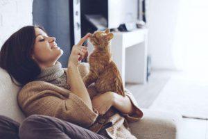 Frau spielt mit Katze auf Couch zuhause