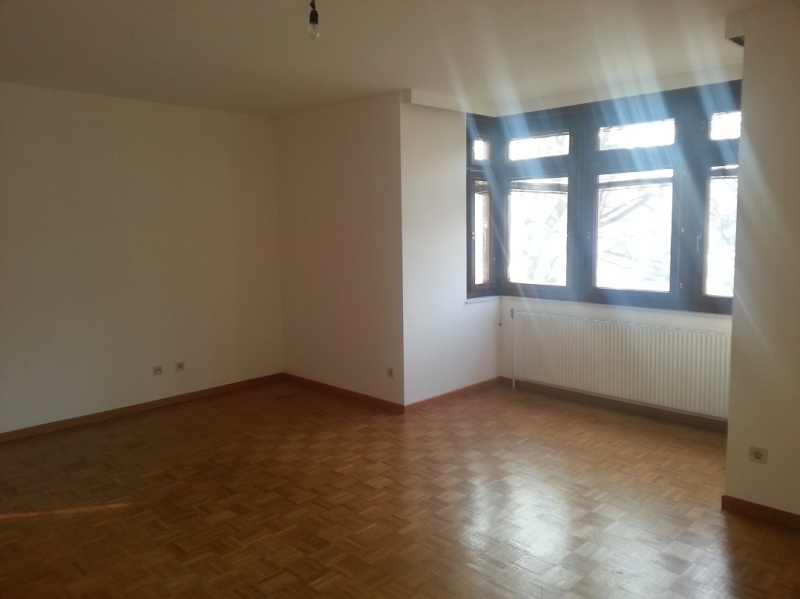 Erstbezug nach Sanierung; 1- 4 Zimmer möglich /  / 2013Göllersdorf / Bild 0