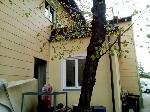3 bestandsfreie Wohnungen, Geschäftslokal, Baugrund- im Paket an Anleger abzugeben /  / 2340Mödling / Bild 2