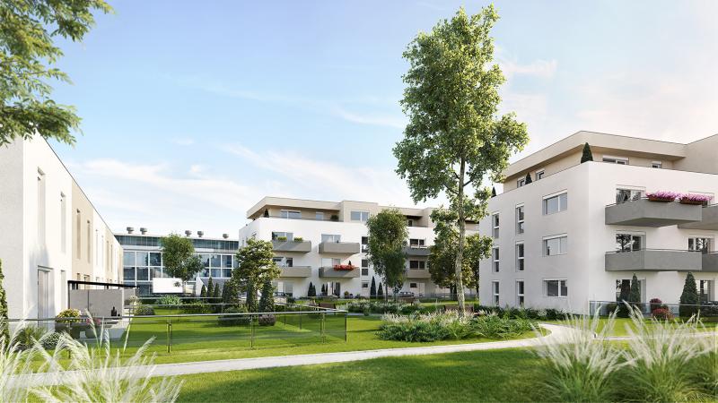 PENTHOUSE - Wohnen im Grünen (Neubau) mit großer Terrasse  Top 15 - im sofortigen Eigentum /  / 2640Gloggnitz / Bild 1