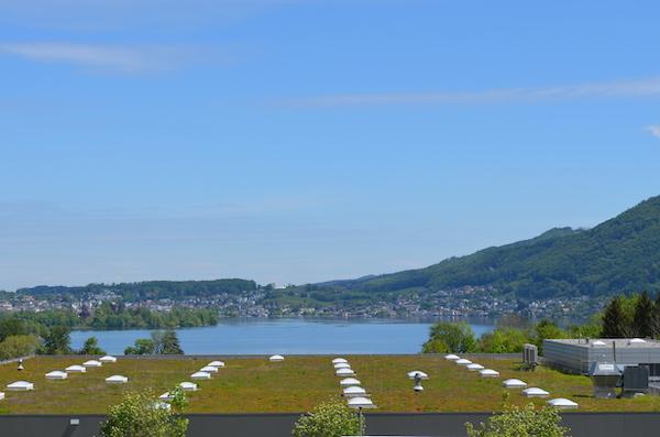 Tolle Wohnung mit See- und Gebirgsblick in Altmünster