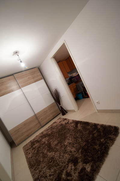 Ziegelmassives Einzelhaus mit Traumgarten: 4 Zimmer, Keller, Terrasse und Eigengrund. /  / 3034Maria Anzbach / Bild 4