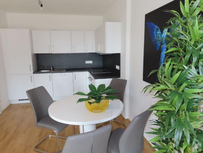 1,5-Zimmer-DG-Wohnung, BS3 Top 33 in Pixendorf mit idealer öffentlicher Anbindung, Wohnpark Tullnerfeld /  / 3441Pixendorf / Bild 4